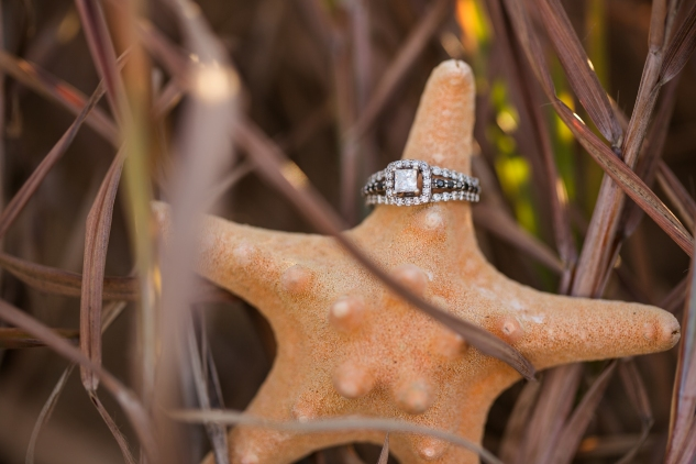 virginia-beach-engagement-with-dogs-17