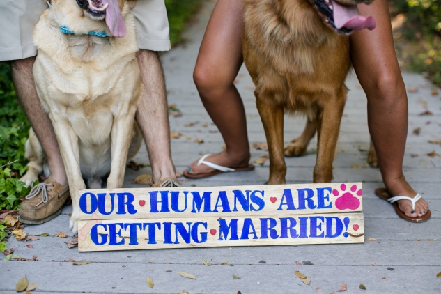 virginia-beach-engagement-with-dogs-3