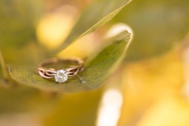williamsburg-engagements-wedding-photo-photographer-14