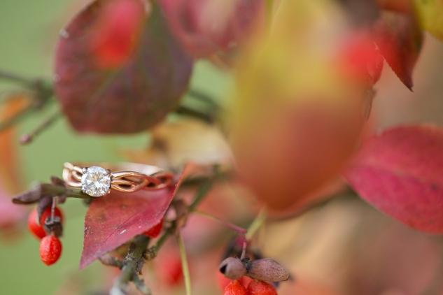 williamsburg-engagements-wedding-photo-photographer-16