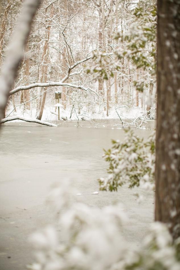 ryan rachel snow-2