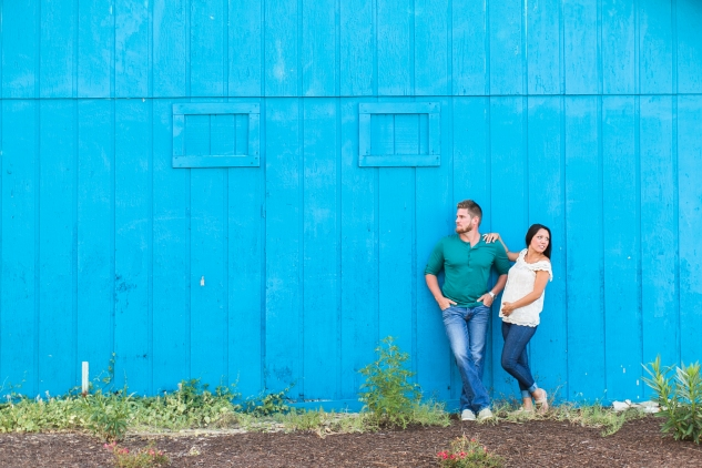 bree-stephen-maternity-proposal-51