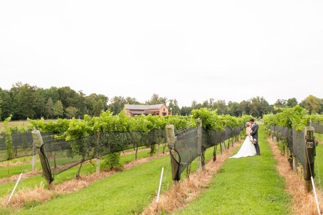 new-kent-winery-purple-wedding-amanda-hedgepeth-photography-89